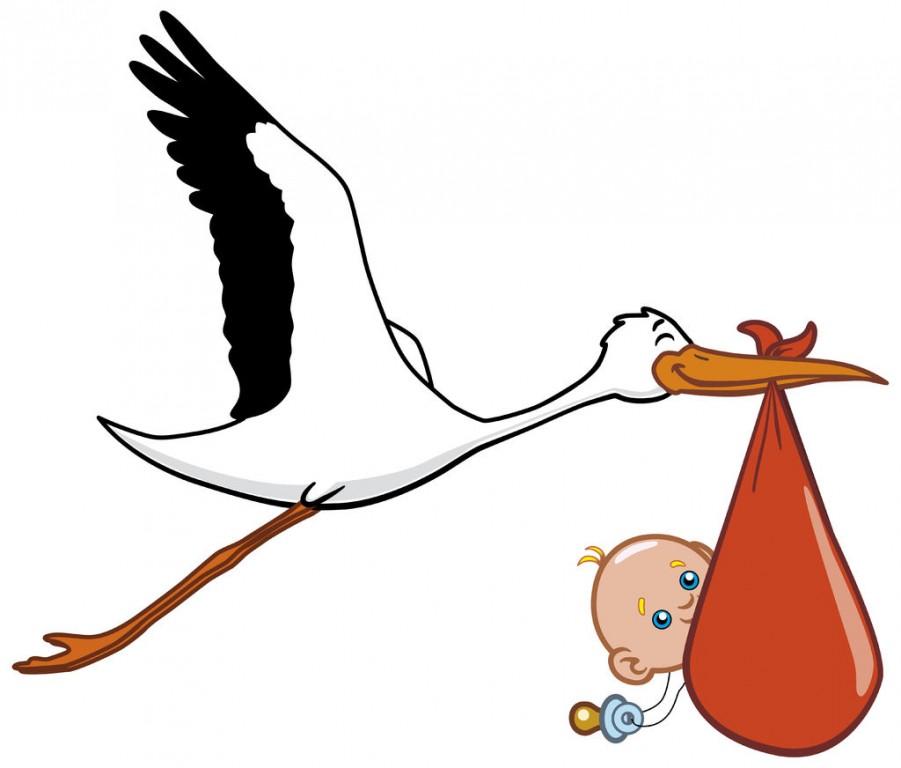 Прикольная картинка аиста с ребенком в клюве